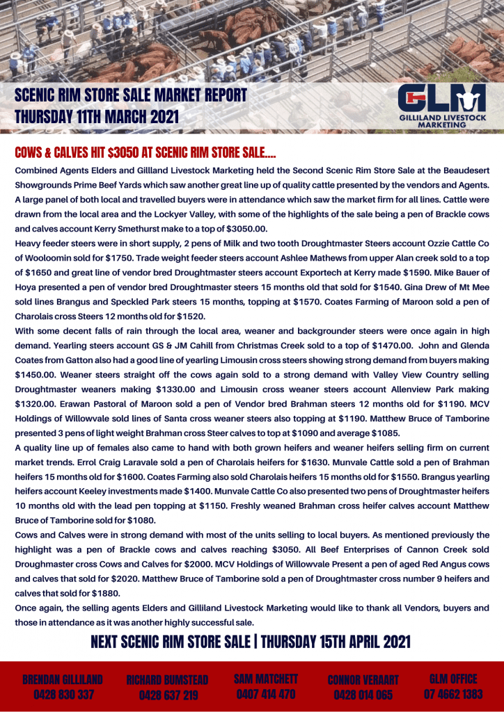 GLM DALBY WEEKLY MARKET REPORT (5)